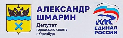 Депутат городского совета г. Оренбурга 2015